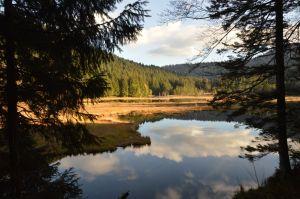 Even zitten om te kijken naar de mooie natuur - terwijl de kids takken slijpen natuurlijk :) Aan het meer van Lispach
